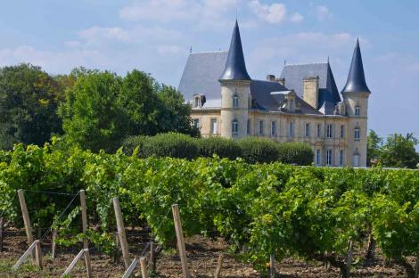 Explore Bordeaux's vineyards